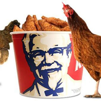 th_Kentucky-Fried-Chicken